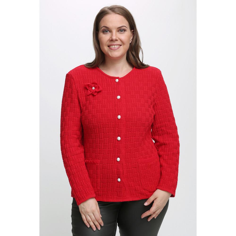Жакет Д 2231 . Вязаный трикотаж в розницу. Женская одежда от производителя в магазине Анколи
